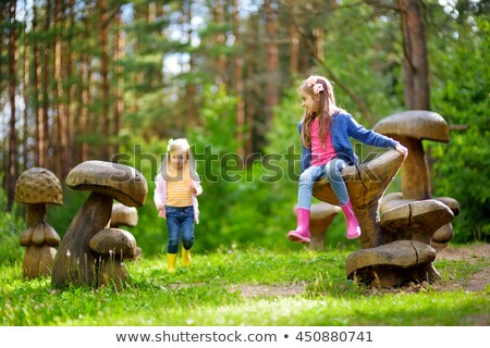 two mushrooms on wooden stock photo © massonforstock