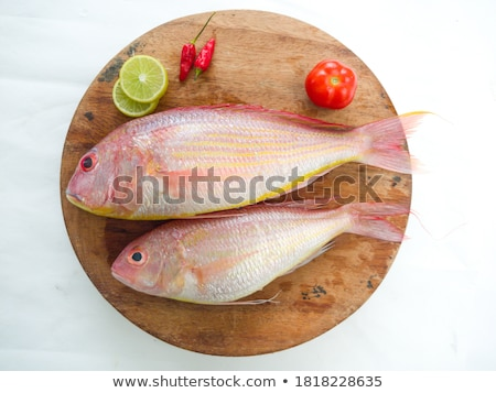 Pink Rockfish Stock photo © Laracca