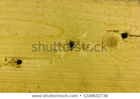 Bullet hole wood Stock photo © nicemonkey