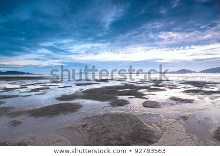 sunset shingle coast in hong kong  Stock photo © cozyta