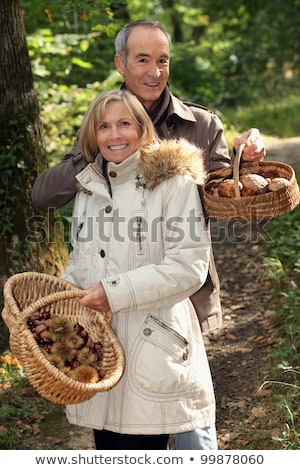Couple rassemblement champignons forêt domaine hiver Photo stock © photography33