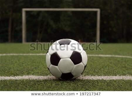 Feketefehér futballabda mesterséges tőzeg futballpálya futball Stock fotó © nuttakit