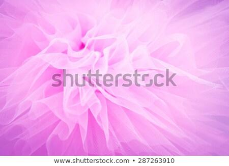 紫色 スカート 孤立した 白 ファッション 色 ストックフォト © RuslanOmega
