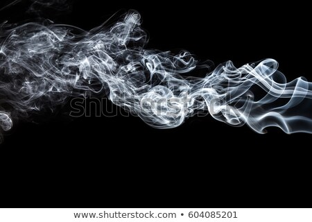 A smoking cigar on white Stock photo © vlad_star