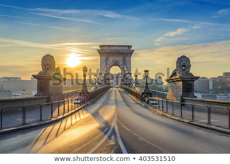 szchenyi chain bridge in budapest hungary stock photo © andreykr