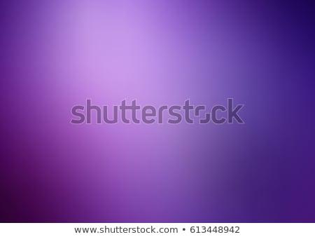 Purple Motion Blur Stock photo © grivet