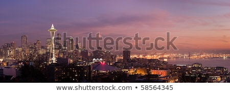 Seattle paars nacht panoramisch stad skyline Stockfoto © kwest