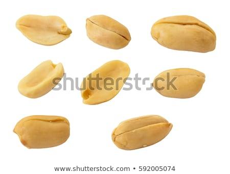 amendoim · isolado · branco · natureza · fundo · cor - foto stock © masha