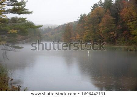 Sonbahar Vermont renkli ağaçlar banka Stok fotoğraf © gophoto