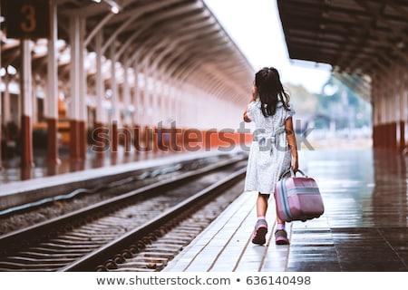 magányos · lány · bőrönd · vidéki · út · nők · természet - stock fotó © aikon