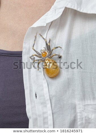 Zdjęcia stock: Bursztyn · pająk · odizolowany · biały · morza · metal