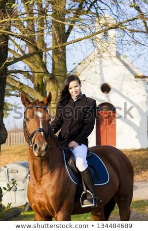 Lovas lóháton Csehország épület nők ló Stock fotó © phbcz