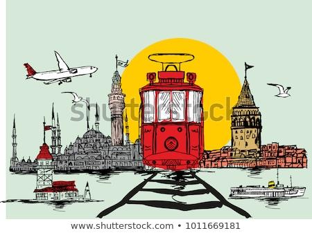 Стамбуле · город · силуэта · вектора · Skyline · иллюстрация - Сток-фото © maxmitzu