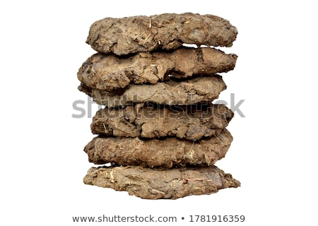 Dried cow dung Stock photo © bdspn