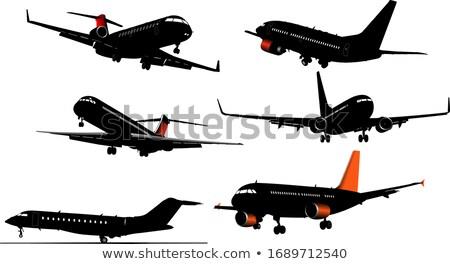 Airplane taking off. Vector illustration for designers Stock photo © leonido