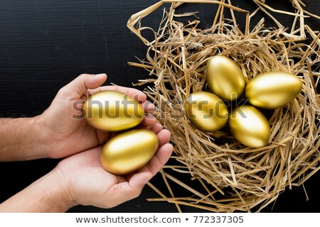 Man Holding Nest Full Of Golden Eggs Stock photo © HighwayStarz