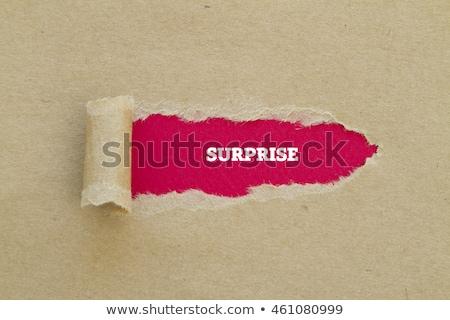 Odkryć papieru słowo podpisania dokumentu Zdjęcia stock © fuzzbones0