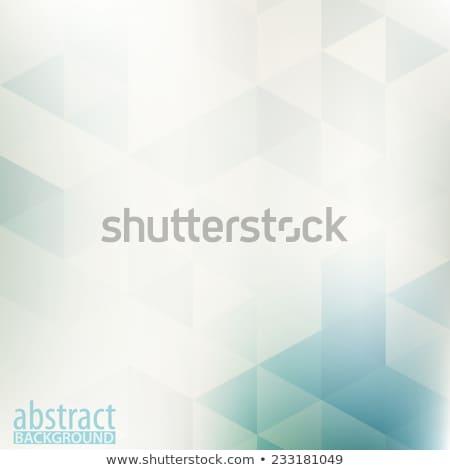 ベクトル 抽象的な 薄緑 幾何学的な テクスチャ インターネット ストックフォト © netkov1