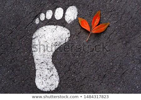 voetafdrukken · nat · zand · strand · parcours - stockfoto © clearviewstock