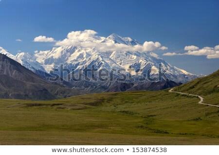 Peaks Sky Valley's Park Road Denali National Park Stock photo © cboswell