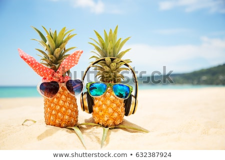 熱帯ビーチ サングラス 日の出 ペア 空 水 ストックフォト © Kacpura