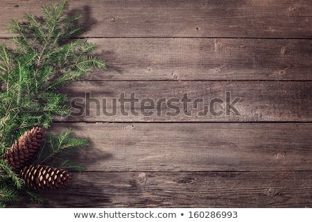 the spruce branches with cones on a wooden background stock photo © valeriy