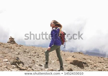 belo · alegre · mulher · saltando · montanhas · atrás - foto stock © Paha_L