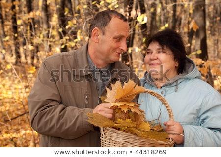 oude · man · oude · vrouw · houden · mand · esdoorn · bladeren - stockfoto © Paha_L