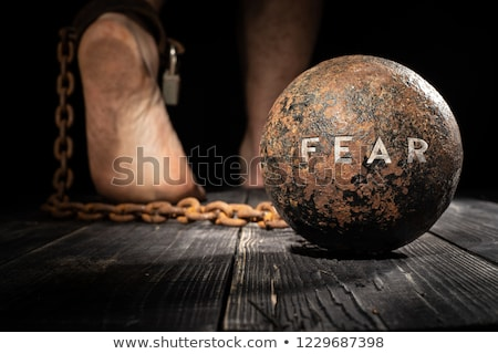 Fearful of a trap Stock photo © alphaspirit