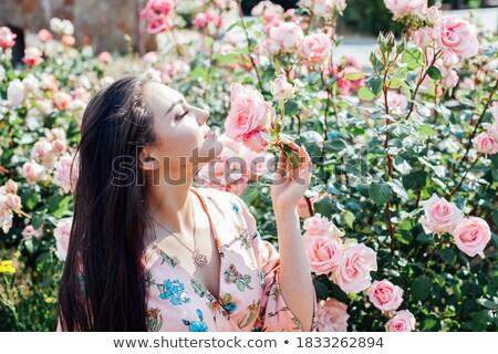 довольно Lady ароматный роз цветы девушки Сток-фото © majdansky