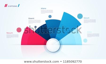 Infografika pite grafikonok mutat épületek terv Stock fotó © bluering