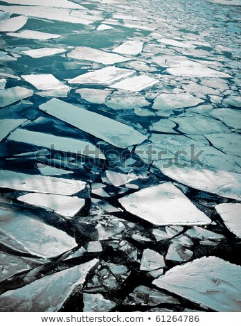 Cracked ice floating on river water surface Stock photo © stevanovicigor