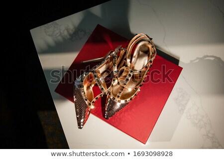 Złoty sandały polu odizolowany biały zakupy Zdjęcia stock © gsermek