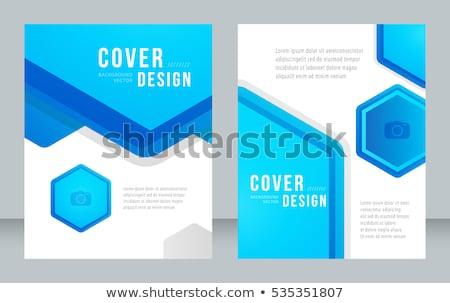 Kék éves jelentés üzlet brosúra szórólap Stock fotó © SArts