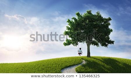 Młody chłopak drzewo huśtawka dziecko zabawy szczęścia Zdjęcia stock © IS2