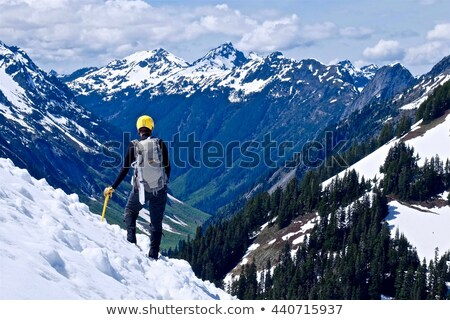 man standing on snow covered peak stock photo © is2