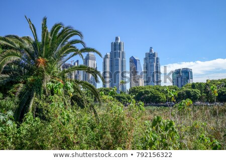 buenos aires view from costanera sur ecological reserve stock photo © daboost