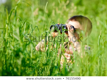 Boy playing hide and seek in field Stock photo © IS2
