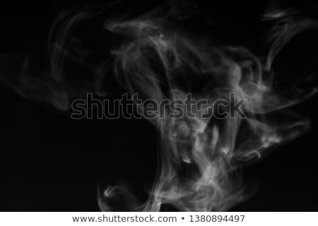 abstract white water vapor on a black background stock photo © valeriy