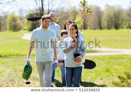 Grupy wolontariusze drzew grabie parku wolontariat Zdjęcia stock © dolgachov