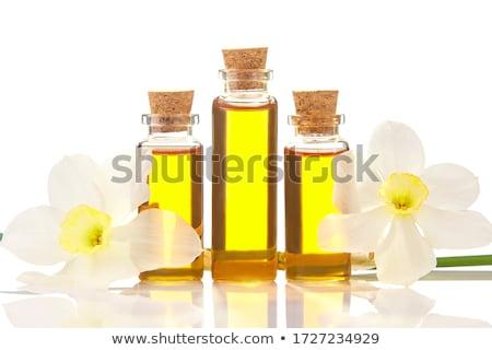 Flor narciso vidrio botella blanco Foto stock © bdspn