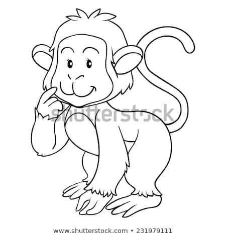 Hayvan maymun muz örnek doğa Stok fotoğraf © colematt
