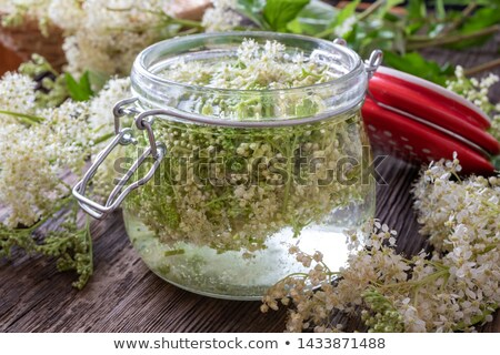 A jar filled with meadowsweet blossoms and alcohol, to prepare tincture Stock photo © madeleine_steinbach