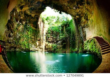 Subterráneo cueva selva ilustración árbol forestales Foto stock © bluering