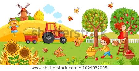 Set of animal at farmland Stock photo © colematt