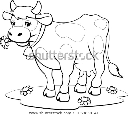 differences color book with cows animal characters stock photo © izakowski
