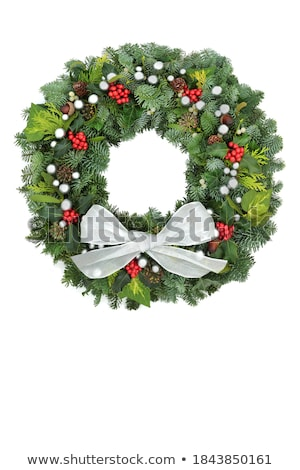 Winter Holly Ivy Cedar and Red Berries Stock photo © marilyna
