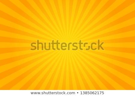 Zonnige oranje heldere gestileerde zonnebloem voorjaar Stockfoto © fenton