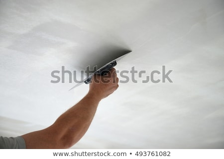 man plastering ceiling stock photo © photography33
