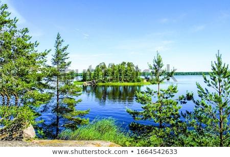 Tree and Green Lake Stock photo © azamshah72